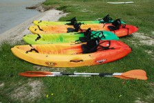 Kayak Rental Now Available!
